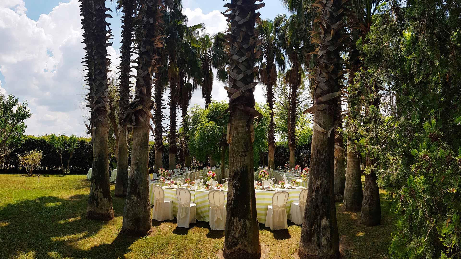 locale per feste tra gli alberi